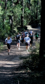 Runners enroute - Stage 5 - Capital to Coast